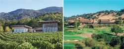 Sonoma & Napa: The Best of Two Valleys for 4