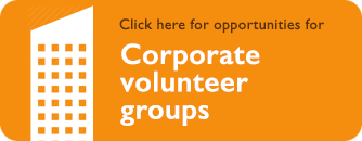 Corporate volunteer groups